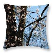 It's Spring 2013 Throw Pillow