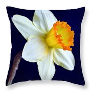 It's Spring - Square Throw Pillow