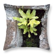 Its The Little Things In Life Throw Pillow
