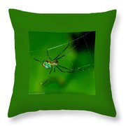 Itsy Bitsy 2 Throw Pillow