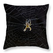 Itsy Bitsy Spider My Ass 2 Throw Pillow