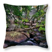 Ivanhoe Serenity Throw Pillow
