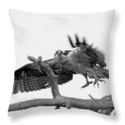 I've Got My Eyes On You Throw Pillow