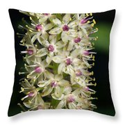 Ivory  And Amethyst Tower Throw Pillow