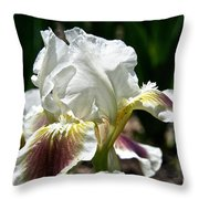 Ivory Sapphire Throw Pillow