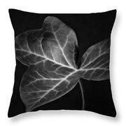 Black And White Flowers Macro Photography Art Work Throw Pillow