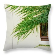Ivy - Window Covered By Creeping Ivy. Throw Pillow