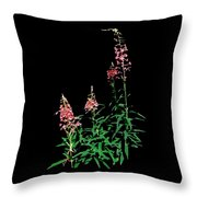 J7046 Throw Pillow