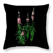 J7063 Throw Pillow