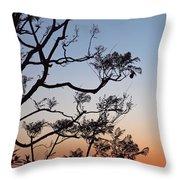 Jacaranda Sunset Throw Pillow by Rona Black