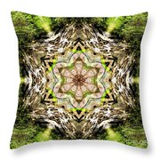 Jack In The Pulpit Mandala Throw Pillow