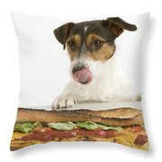 Jack Russell With Sandwich Throw Pillow