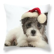 Jack Russell X Westie Pup Wearing Throw Pillow