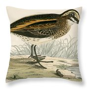 Jack Snipe Throw Pillow