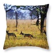 Jackals On Savanna. Safari In Serengeti. Tanzania. Africa Throw Pillow