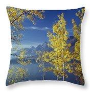 1m9206-jackson Lake And Aspens, Wy Throw Pillow