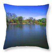 Jackson Park Throw Pillow