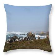 Jagged California Coastline Throw Pillow