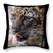 Jaguar-09498 Throw Pillow