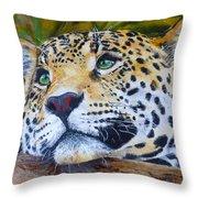 Jaguar Big Cat Original Oil Painting Hand Painted 8 X 10 By Pigatopia Throw Pillow