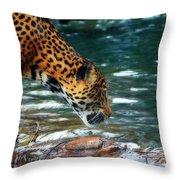 Jaguar Drinking Throw Pillow