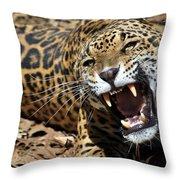 Jaguar Intensity Throw Pillow