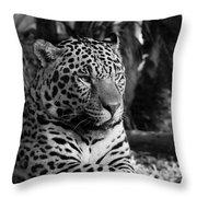 Jaguar Mono Throw Pillow
