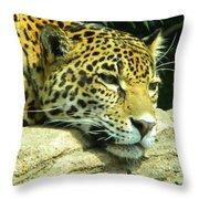 Jaguar Portrait Throw Pillow