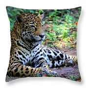 Jaguar Resting From Play Throw Pillow