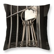 Jail Cell Blues Throw Pillow