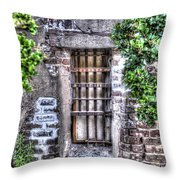 Jail Room Window Throw Pillow