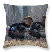 Jake Eastern Wild Turkeys Throw Pillow by Linda Freshwaters Arndt