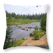 James Creek Pond Throw Pillow
