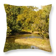 James River In The Fall Throw Pillow