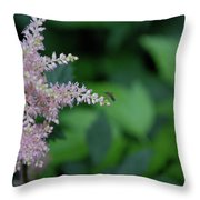 Jammer Astilbe 001 Throw Pillow