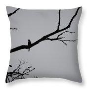 Jammer Bird Silhouette 1 Throw Pillow