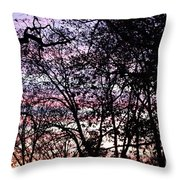 Jammer Cotton Candy Trees Throw Pillow