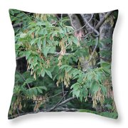 jammer Dripping Seeds Throw Pillow