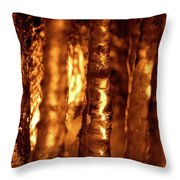 Jammer Fire And Ice 001 Throw Pillow
