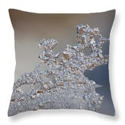 Jammer Fractal Ice 001 Throw Pillow
