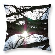 Jammer Lateralus Branching Trees Throw Pillow