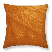 Jammer Tangerine Abstract Throw Pillow