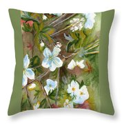Jane's Apple Blossoms 1 Throw Pillow