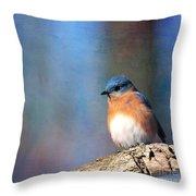 January Bluebird Throw Pillow
