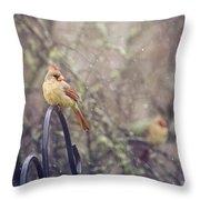 January Cardinals Throw Pillow