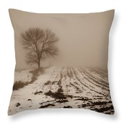 January Fog Throw Pillow