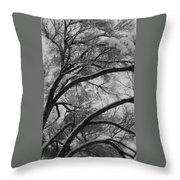 January Tree Throw Pillow