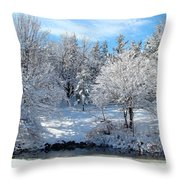January Trees Throw Pillow