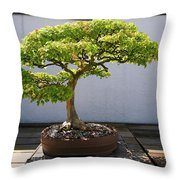 Japanese Bonsai Tree In National Throw Pillow