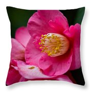 Japanese Camellia-the Official State Flower Of  Alabama Throw Pillow